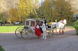 Свадебная карета, запряженая парой лошадей