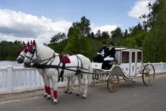 Закрытая карета с парой лошадей